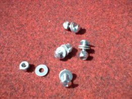 License Plate Screws